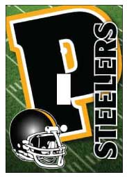 Pittsburgh Steeler Light Switch Cover